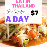 Are you backpacking Thailand on a budget? Looking for cheap food in Bangkok? This post goes through ways to stick to a $7 a day food budget while traveling Thailand. #BackpackingThailand #CheapEatsThailnd #BackpackersBudget #ThaiStreetFood #StreetFood