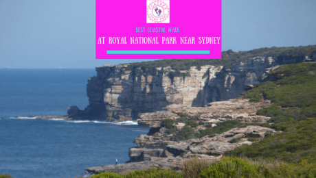 at Royal National Park Near Sydney