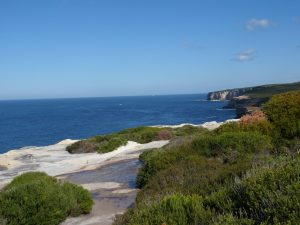 The Best Coastal Walk at Royal National Park Near Sydney