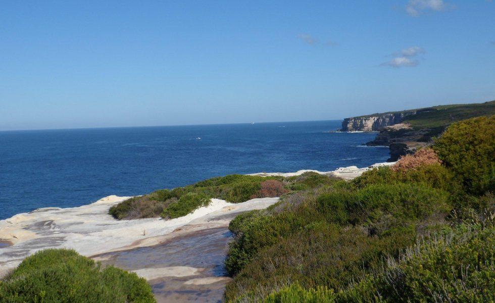 Best Coastal Walk at Royal National Park Near Sydney