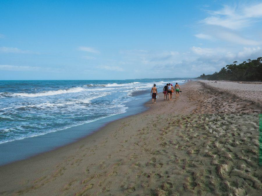 Colombia Guides | Things to do in Palomino