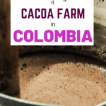 Colombia Adventures   Visiting a Cacao Farm in Colombia