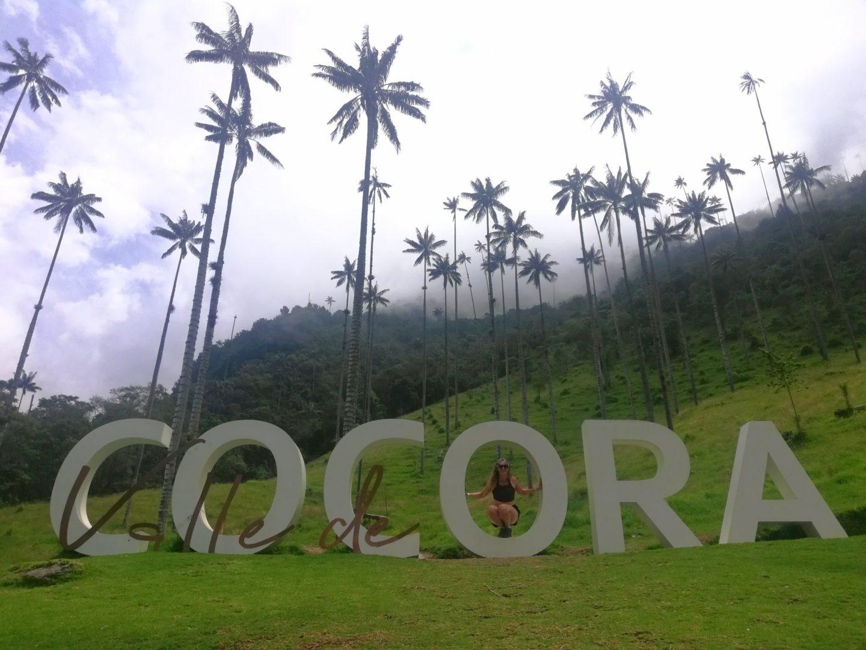 Colombia trekking Valle de Cocora