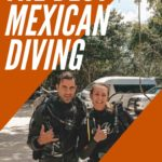 Diving in Riviera Maya | The Best Mexican Diving