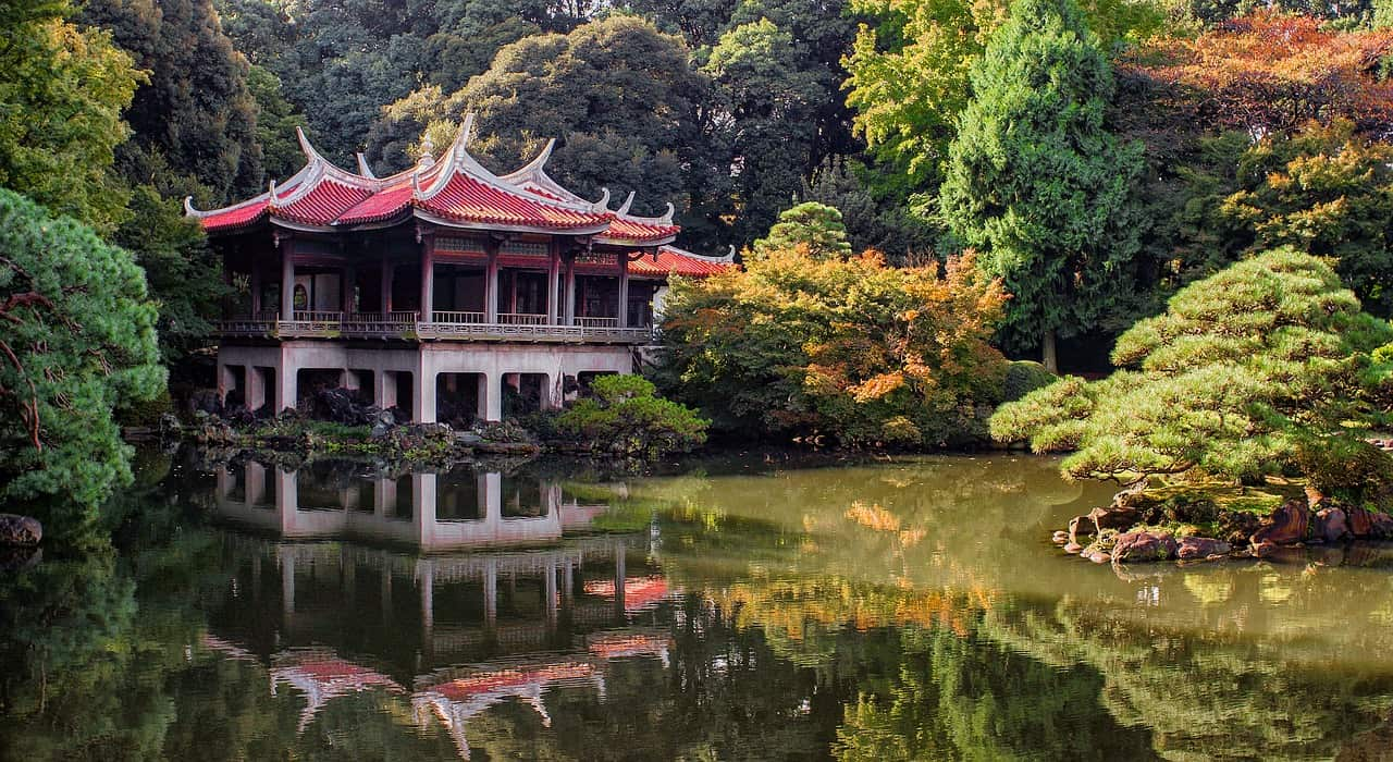 The Solo Guide to Tokyo