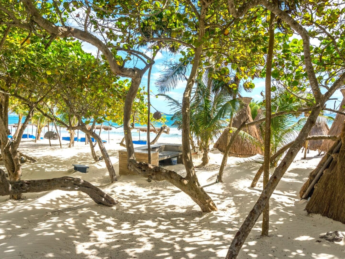 11 Tulum Beach Clubs You NEED to visit