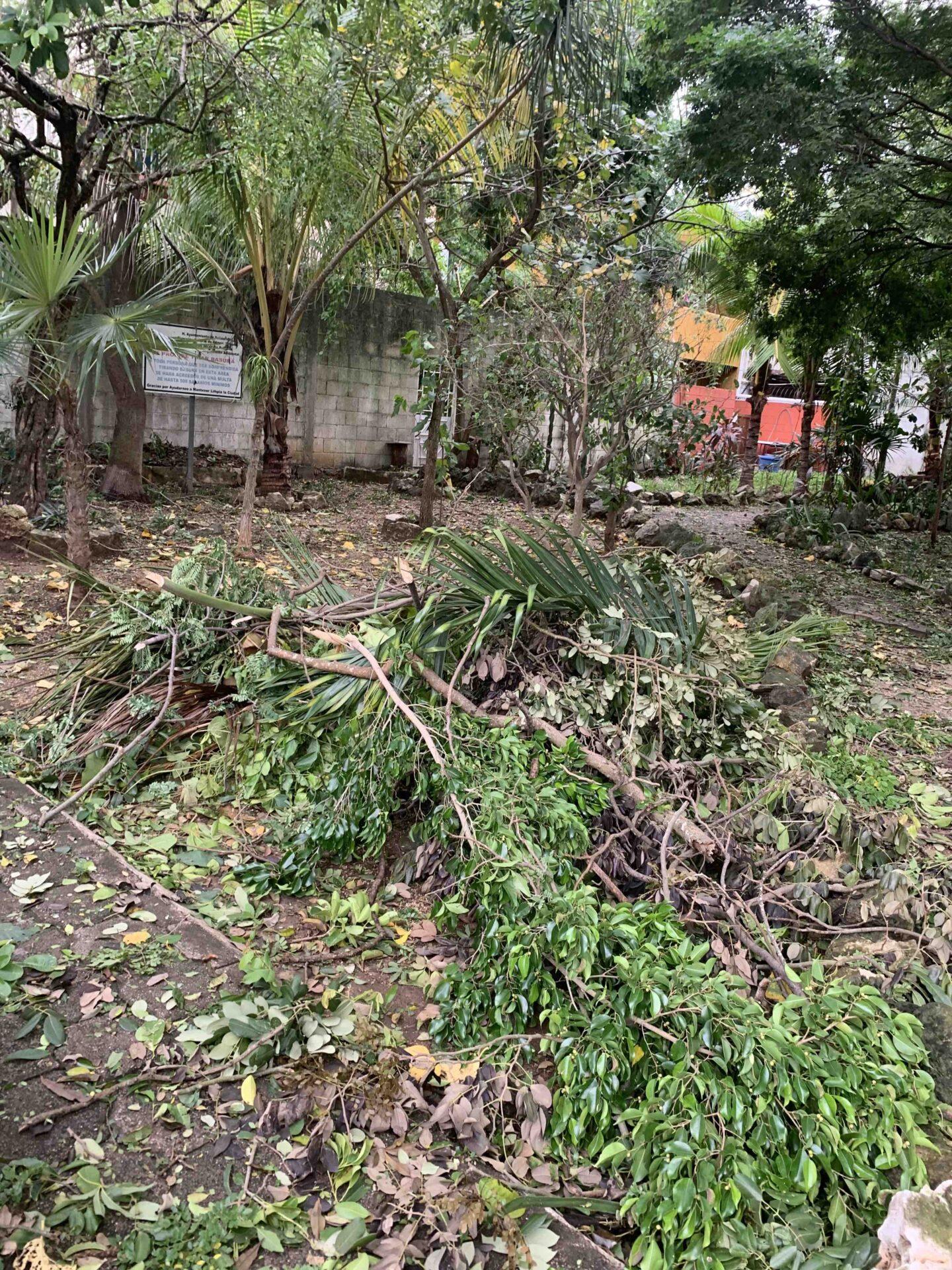 hurricane season in mexico