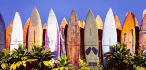 Surf boards in a row | Best Surfing in Mexico 2021