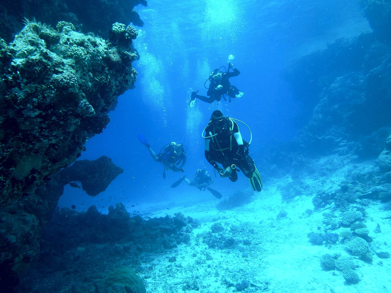 The Best Dive Computer For Beginners