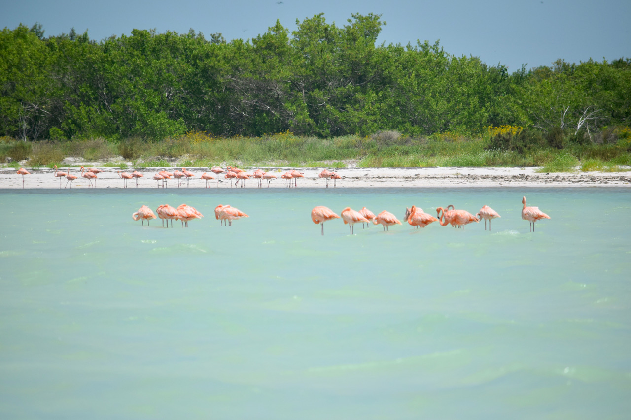 Isla Holbox best vacation spots in Mexico